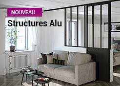 Structures Alu